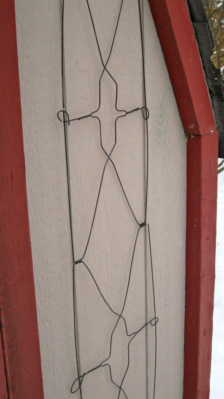 My Garden Diaries Trellis From Wire Coat Hangers Garden