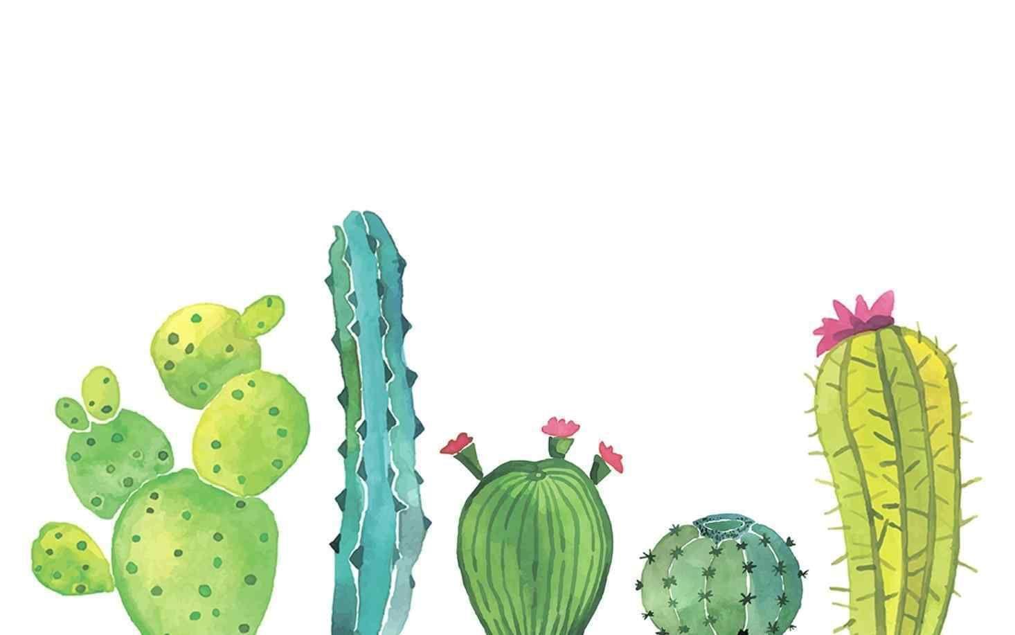 Cute Cactus Succulent Wallpaper Desktop Wallpaper Summer Wallpaper Notebook Cute Desktop Wallpaper