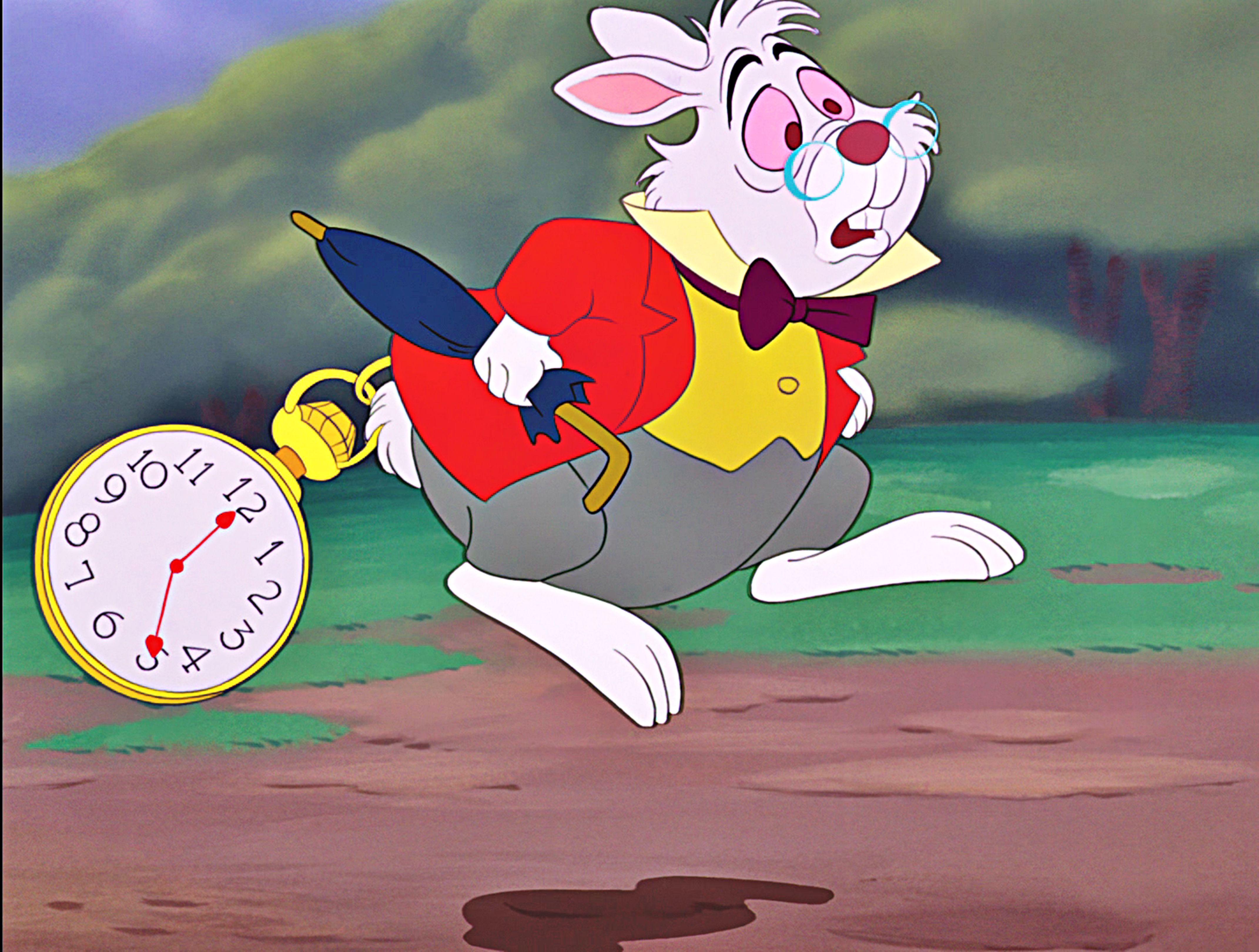 Alice In Wonderland White Rabbit Disney Costume White ...