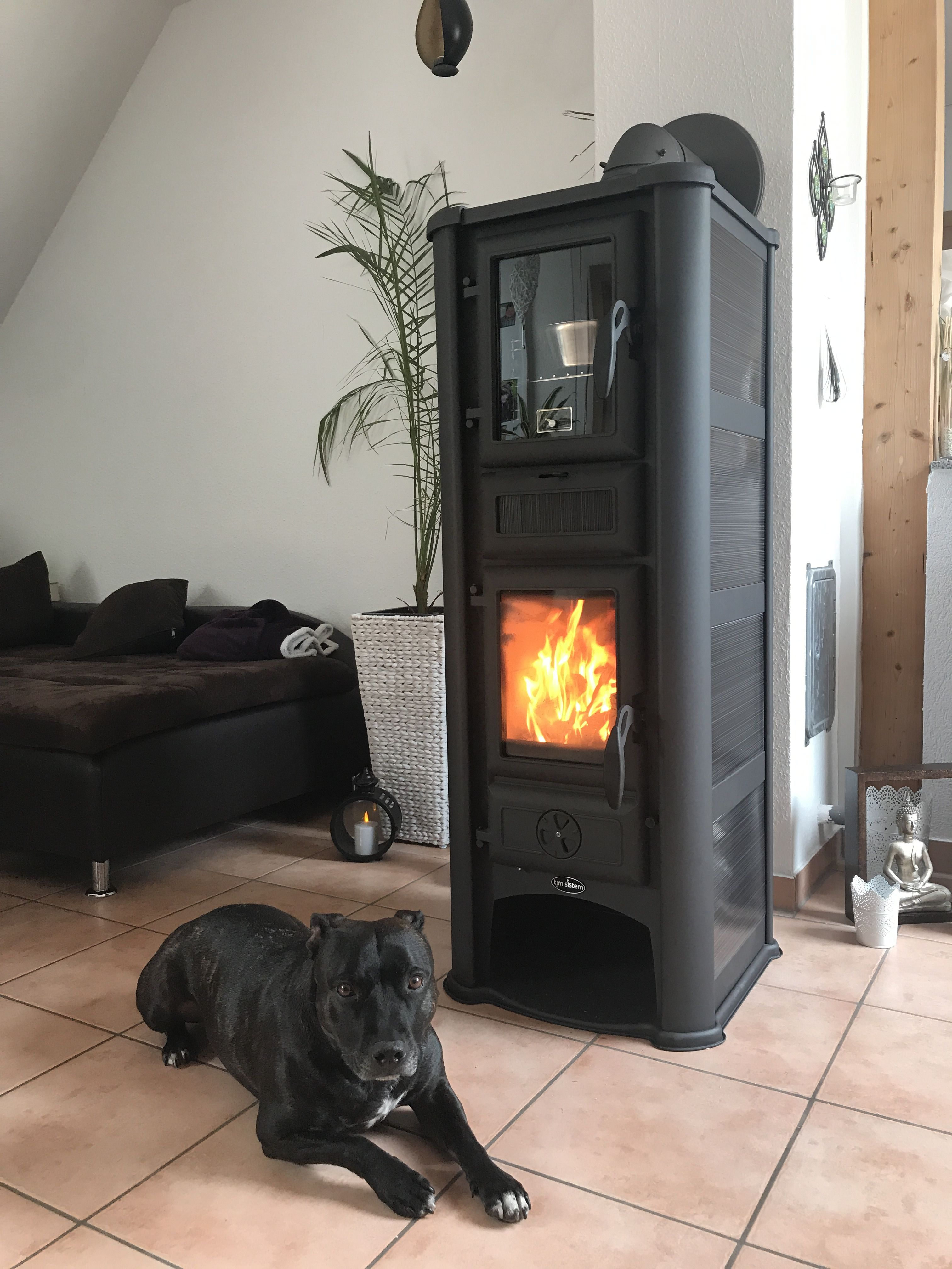 Color Fire Kaminofen Ofen Mit Backröhre Backfunktion Lederata Plus 9kw Seitenteile