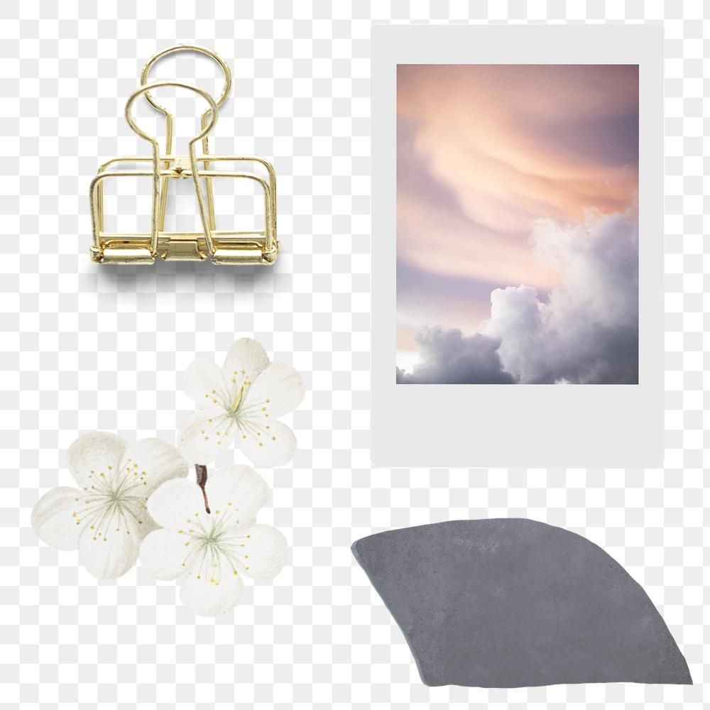 Instant Photo And Gold Binder Clip Transparent Png Premium Image By Rawpixel Com Kappy Kappy Journal Elements Instant Photos Hand Drawn Flowers