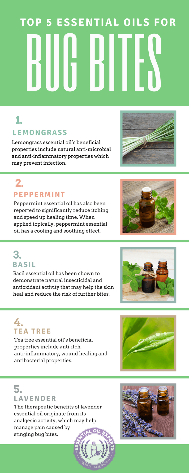 Top 5 Essential Oils for Bug Bites Mosquito, Spider