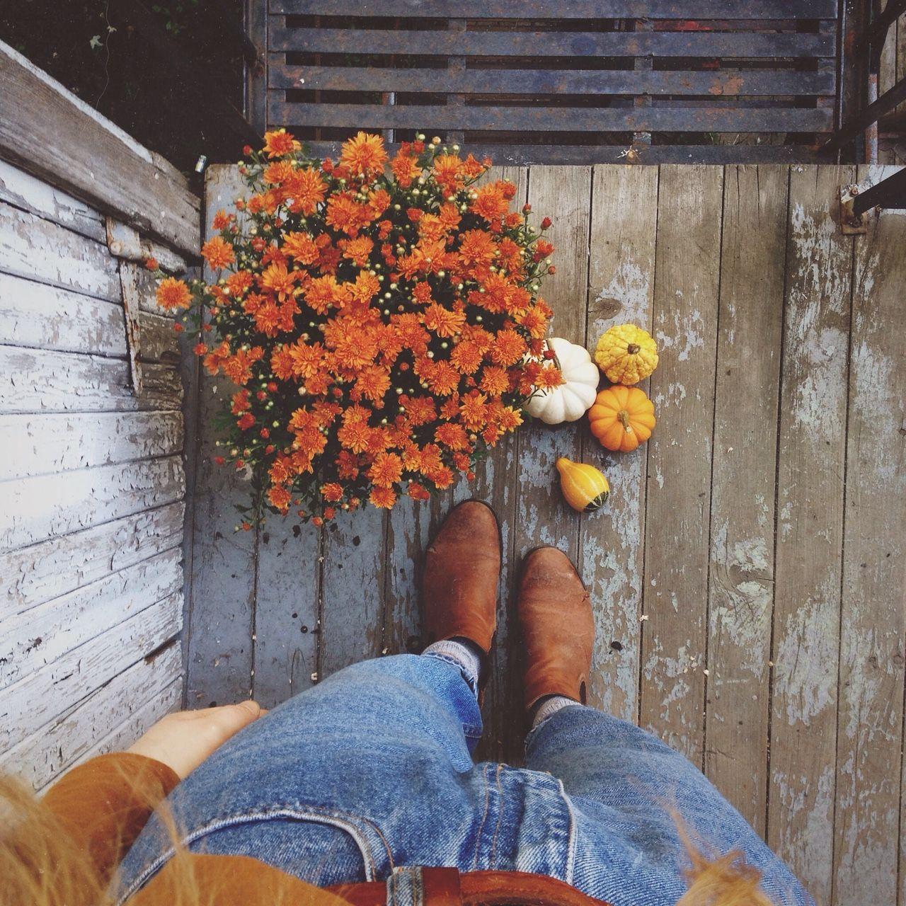 Autumng Asthetics: Fall Vibes // Indie Orange Aesthetics Grunge Tumblr