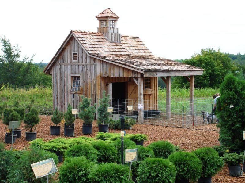 17 Best ideas about Rustic Shed on Pinterest Sheds Shed