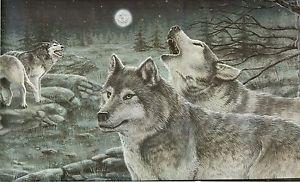 wolf wallpaper border Wolf Wallpaper Border Wolf