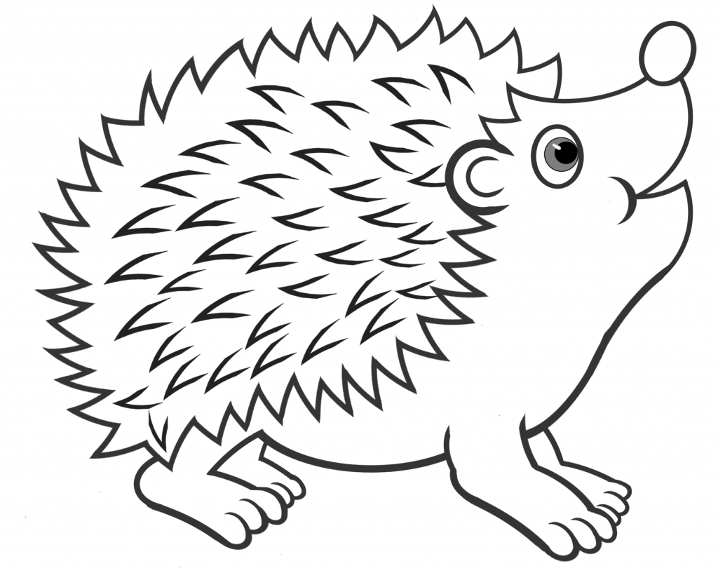 Hedgehog Coloring Pages Best Coloring Pages For Kids Hedgehog Art Coloring Pages Hedgehog Colors