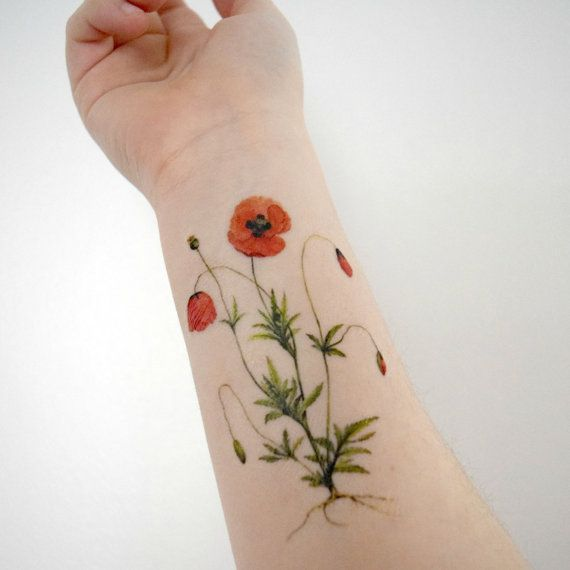 Pin by Ashley Pagan on Tattoos | Vintage flower tattoo ... |Vintage Wildflower Tattoo