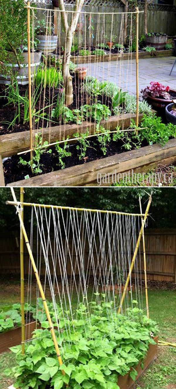 Successful DIY ways to create supports for vegetable and flower beds in the cottage