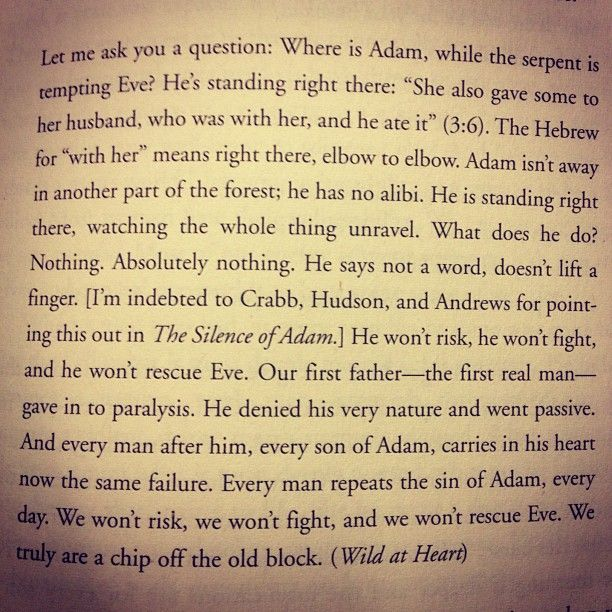 Excerpt From Wild At Heart By John Eldredge A Great Book This Isn