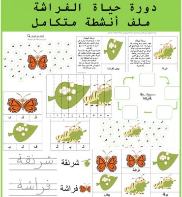 ملف متكامل لأنشطة دورة حياة الفراشة Butterfly Word Search Puzzle