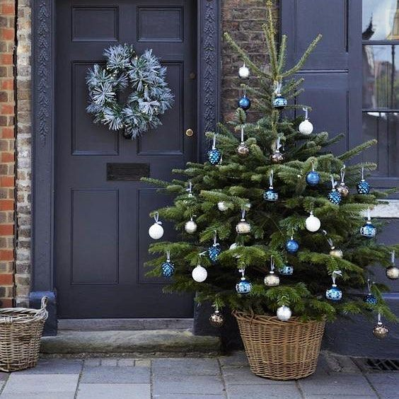 Nordmann Christmas trees at affordable prices across all Sheffield areas  and with delivery services! Opening on the 20th of November, at the Plough  Inn ... - Nordmann Christmas Trees At Affordable Prices Across All Sheffield