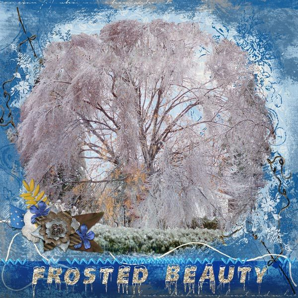 Frosted Beauty