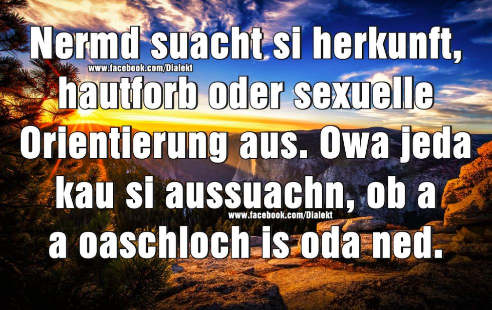 27 Sprüche, über die wirklich nur echte Österreicher