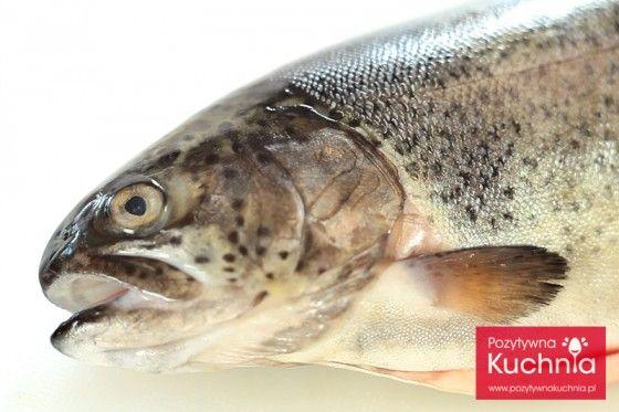 Jak Sprawdzic Swiezosc Ryby How To Cook Fish Fish Cooking