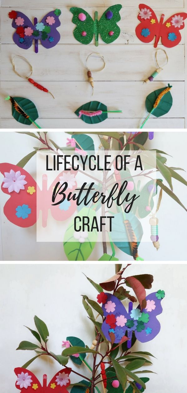 Life Cycle of a Butterfly Craft Tree Butterfly crafts
