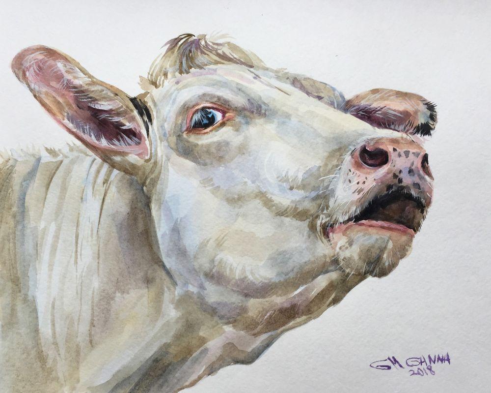 Beige Mooing Cow Portrait Farm Animal Farm Art Original