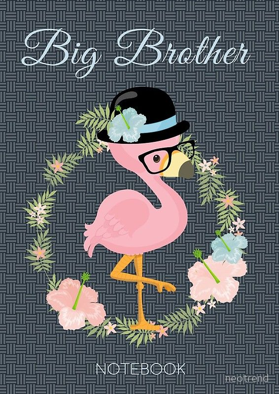 Big Brother Cute Flamingo Boy Gift From Mother or Father