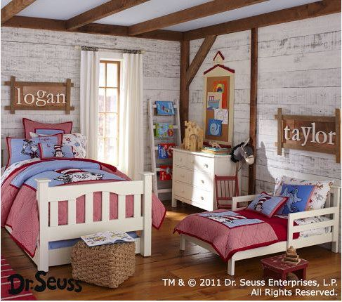 Cute ideas for young boys room!