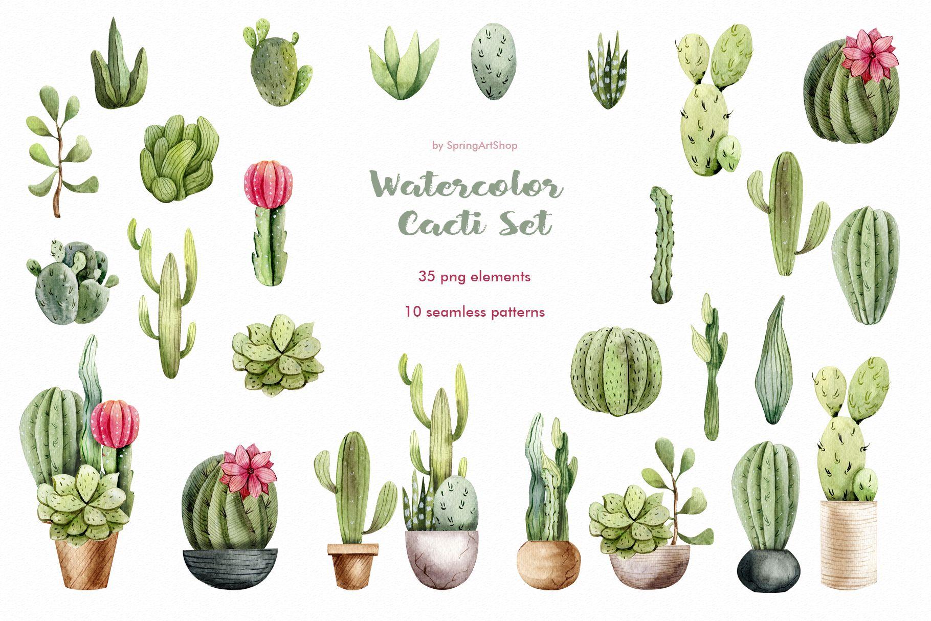 Watercolor Cacti Clipart Plants Watercolor Succulents Cactus