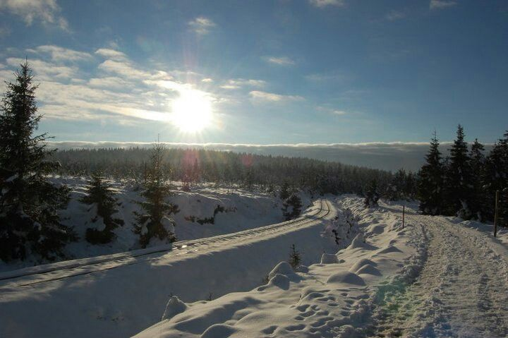 The german 'Harz' in winter - way up to Brocken mountain