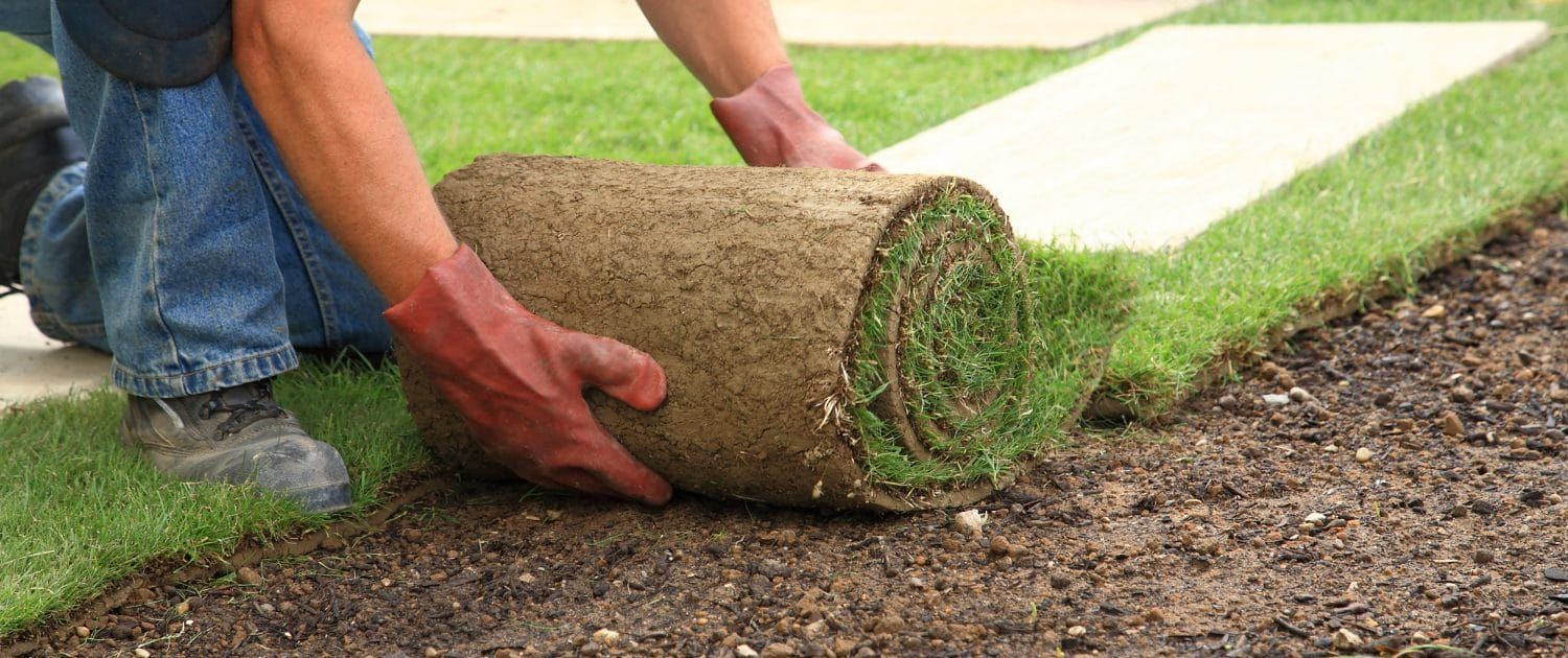 Landscaping Contractors Small Backyard Landscaping Landscape Contractor Landscaping Business