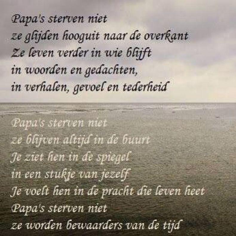 Uitgelezene Afbeeldingsresultaat voor kort gedicht afscheid vader (met GU-11