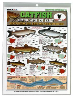 How To Catch Em Fishing Chart Catfish Catfish Fishing How To Catch Catfish Catfish
