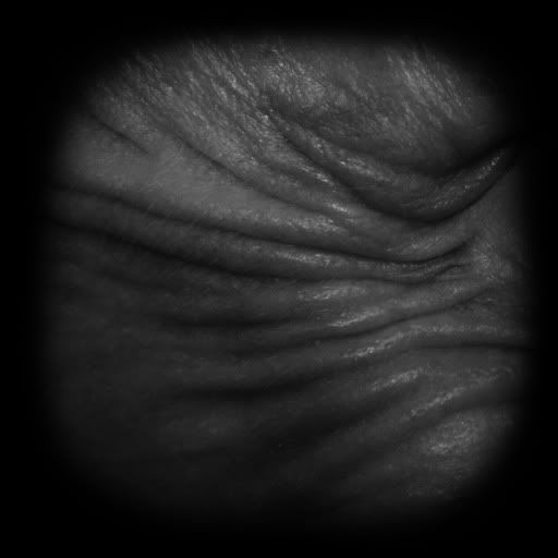 Zbrushcentral Wrinkle Brushes | Pics | Download |
