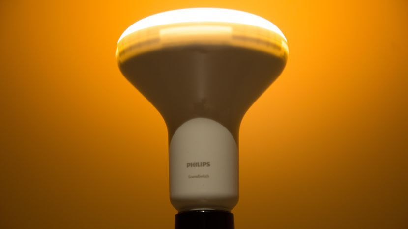 Philips SceneSwitch BR30 LED   Bulbs