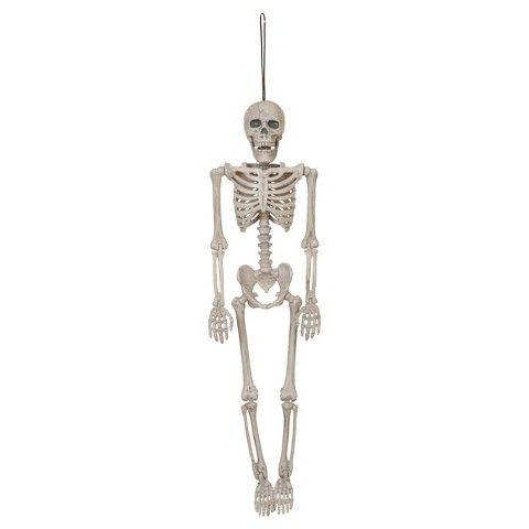 Halloween Posable Hanging Skeleton - Small Want Pinterest - bulk halloween decorations