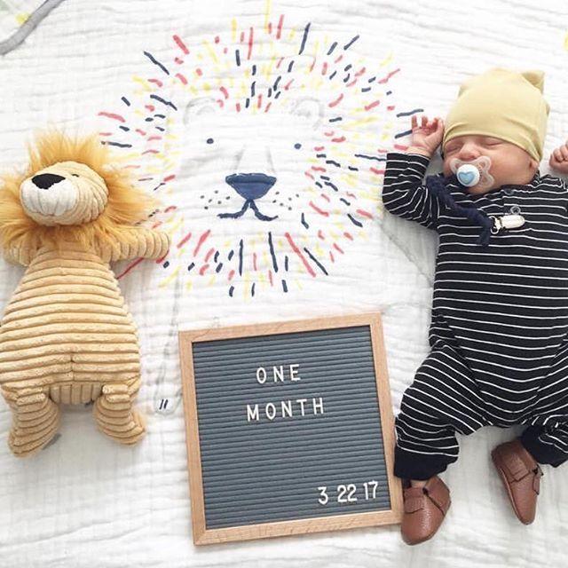 Happy one month baby Leo