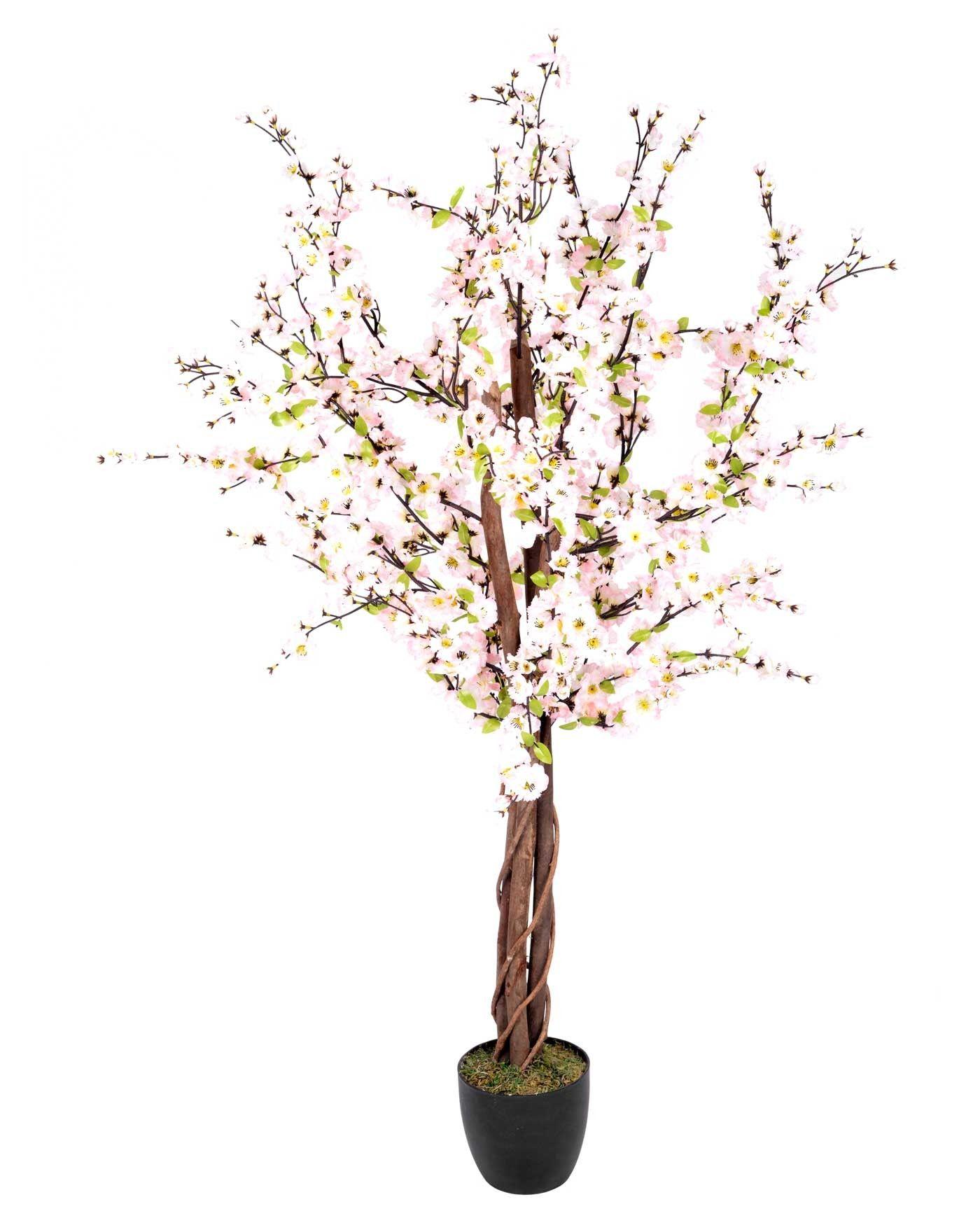 Artificial blossom tree with pink silk flowers 5 feet pohon artificial blossom tree with pink silk flowers 5 feet mightylinksfo