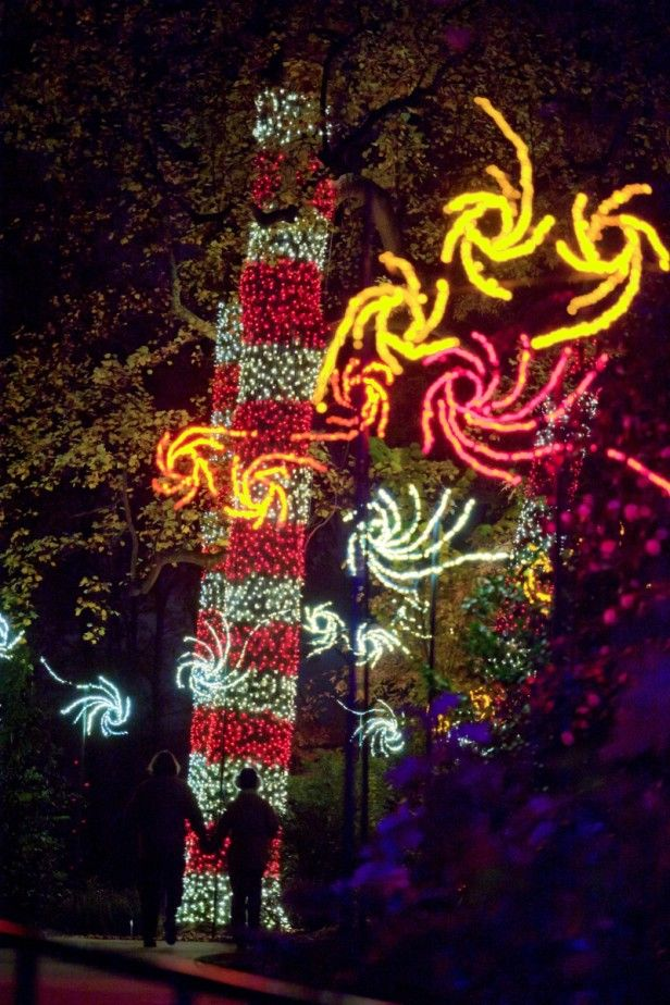 Holiday Light Shows at Botanical Gardens HGTV Gardens