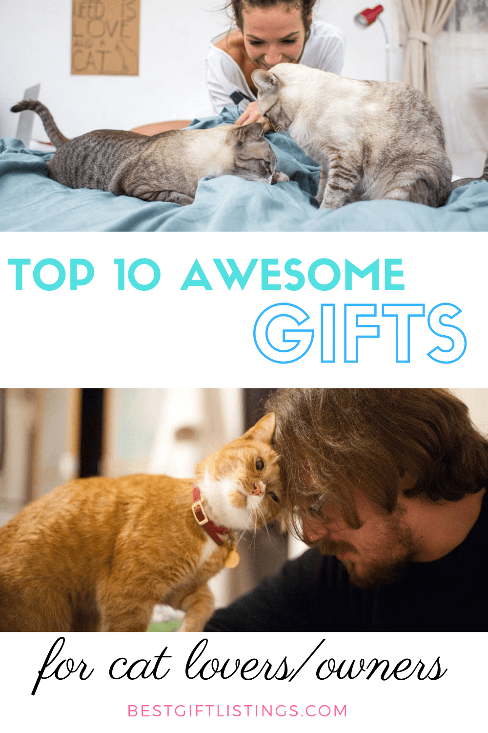 Gifts For Cat Owners Top 10