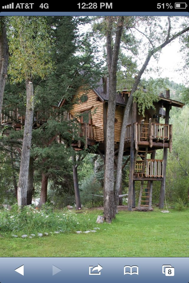 Awesome home in the trees
