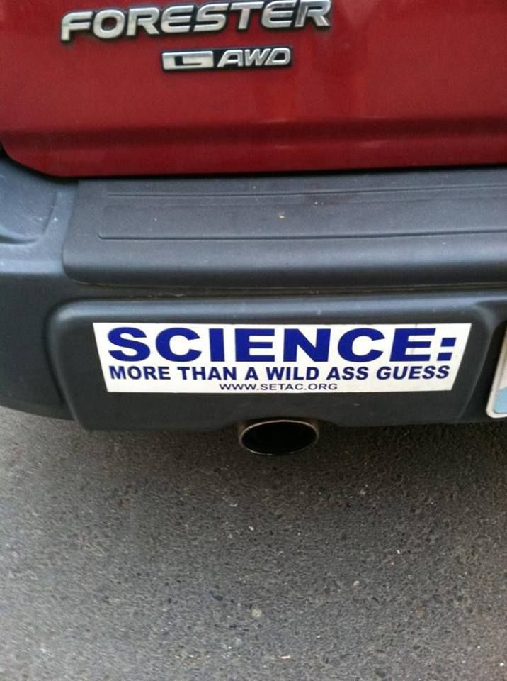 Bumper Sticker Bumper Stickers Pinterest Hilarious And Humor