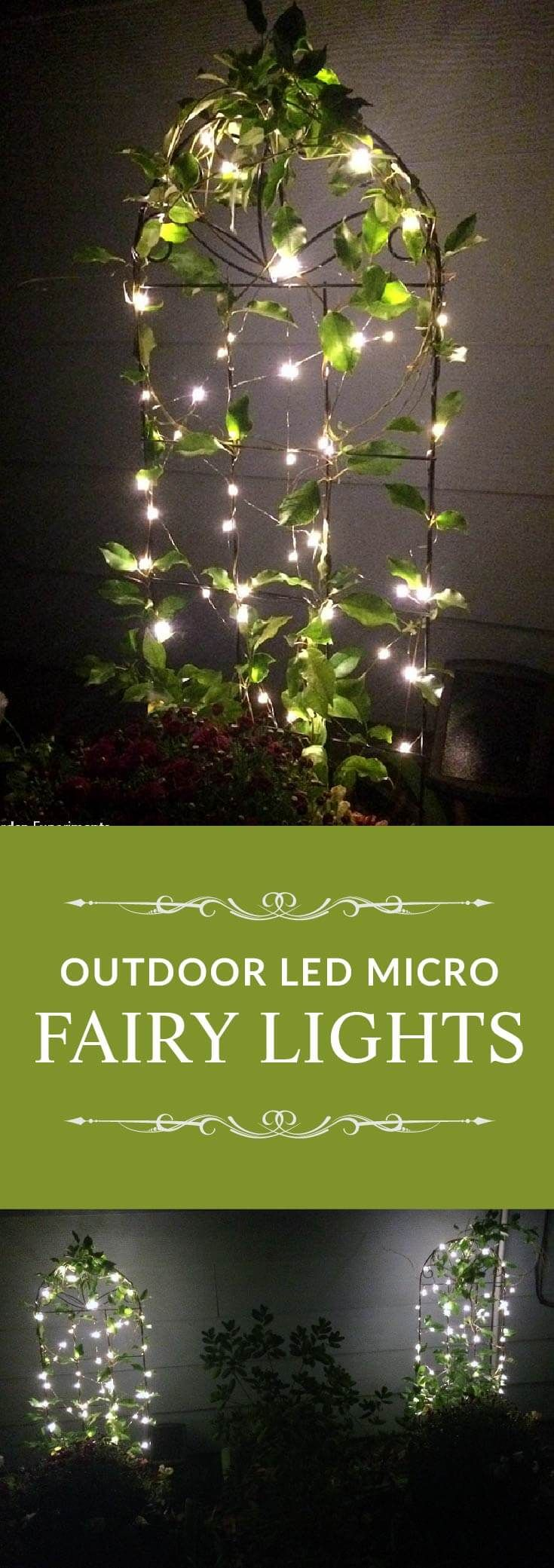 Adding A Little Magic to My Garden Using Fairy Lights