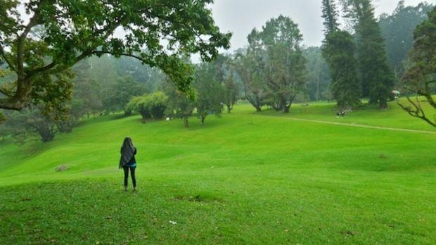 Kebun Raya Taman Cibodas