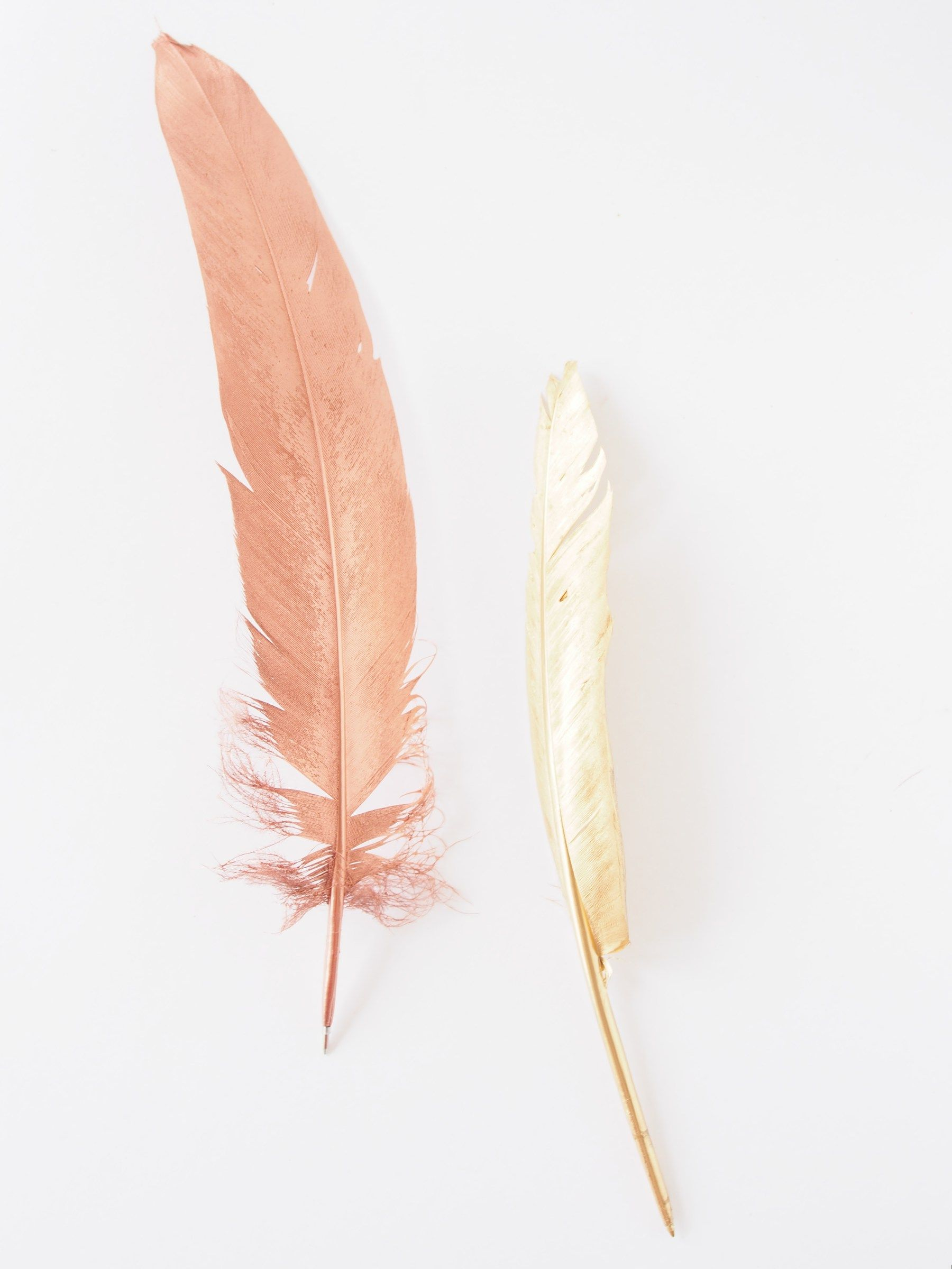 DIY Metallic Feather Pens   Easter greeting, Feathers and Metallic