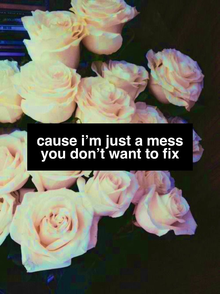 Don T Be A Fool Shawn Mendes Shawn Mendes Quotes Shawn Mendes Songs Shawn Mendes Lyrics