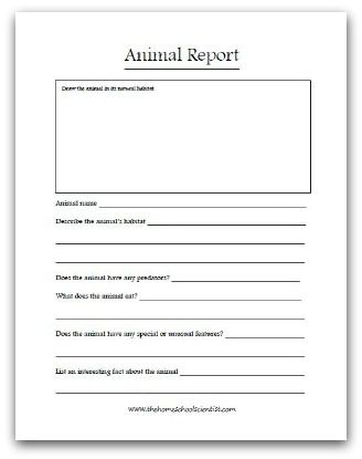 Animal Report Printable  School  Animals