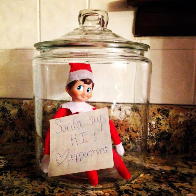 Our Elf on the Shelf:  Week 2