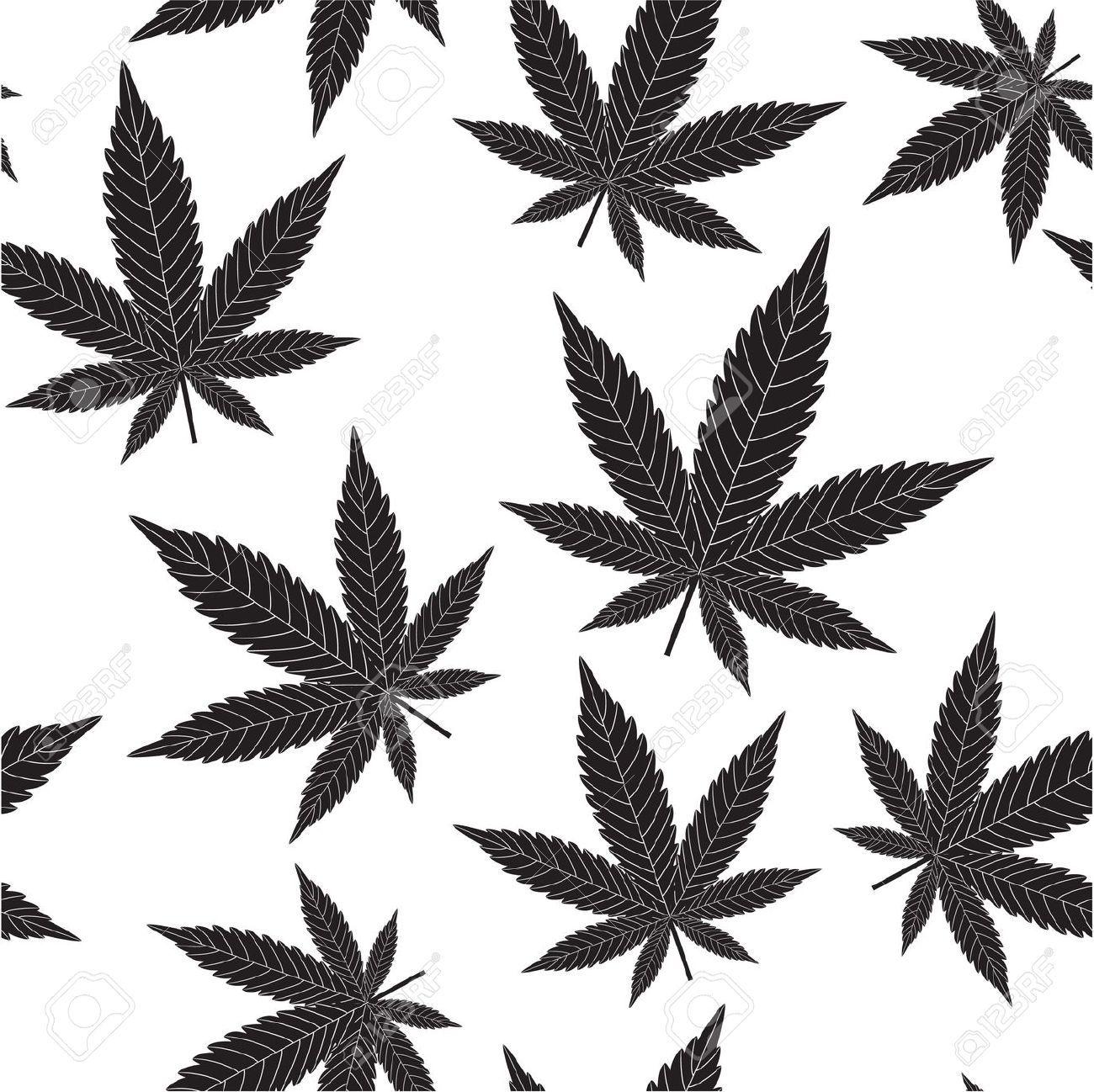 Cannabis Sativa Seamless Pattern Of Leaves