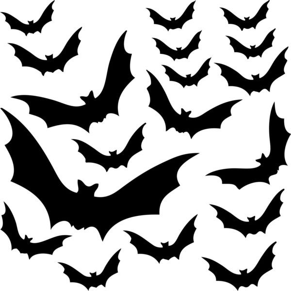 18 Vinyl Decal Bats for Halloween Halloween Decorations For Windows,... (7.100 CLP) ❤ liked on Polyvore featuring home, home decor, holiday decorations, filler, backgrounds, extras, halloween, animals, effect and halloween home decor