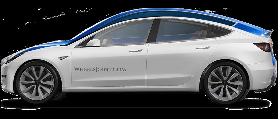 Tesla Model Y Body Size Comparison With Model 3 Model S Model X And Cybertruck Tesla Model Tesla Model