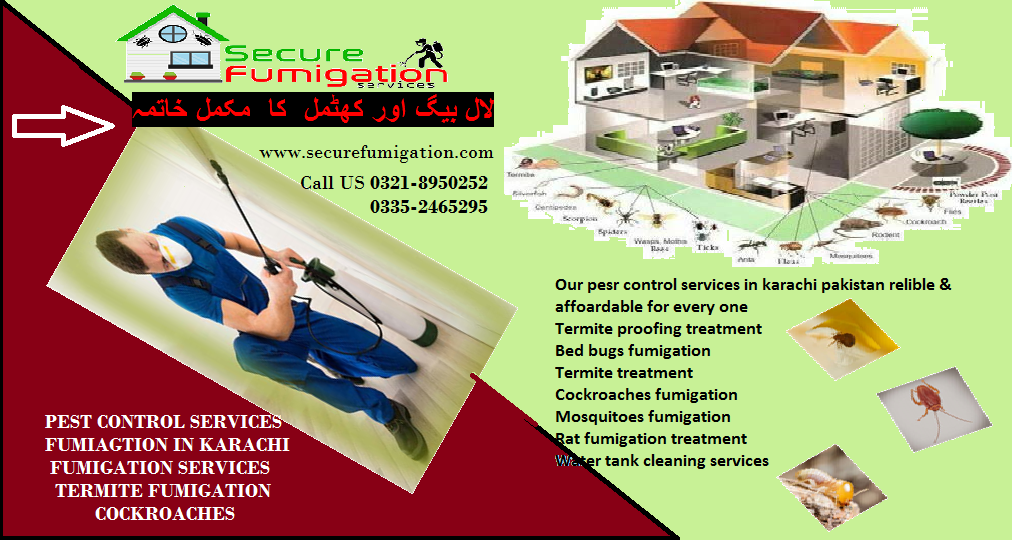 pest control services in 2020 Fumigation services, Pest