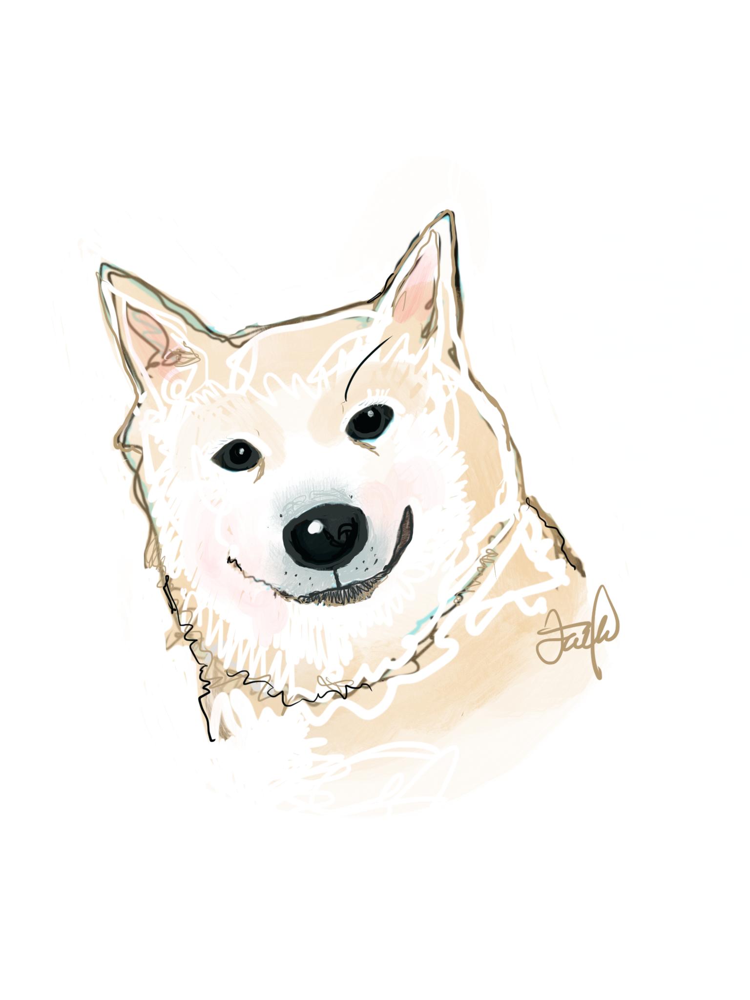 Pin By Suzanne Meow Meow Falk On Snowglobe My Shiba Inu Dog Tattoos Shiba Inu Animal Tattoo