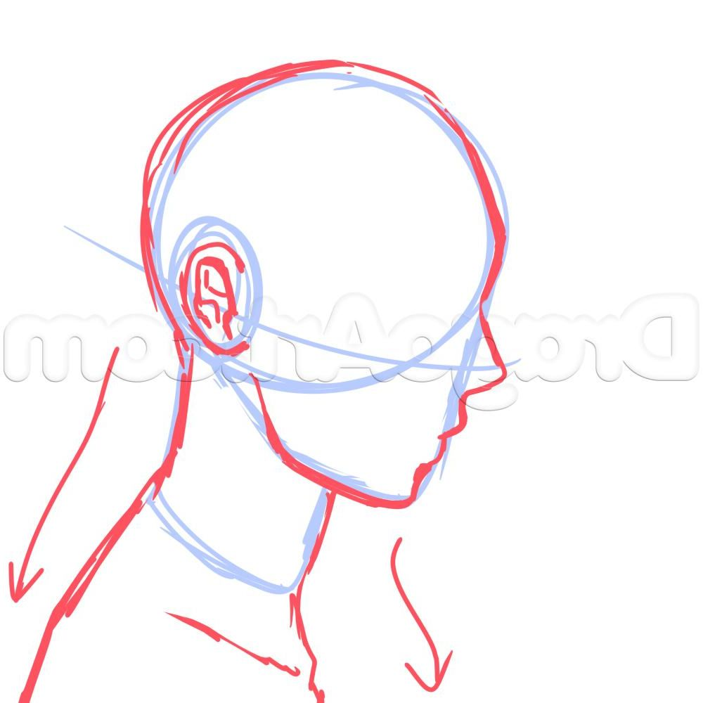 Drawing Side Of Face Anime 8 Side View Male Anime Face Drawing