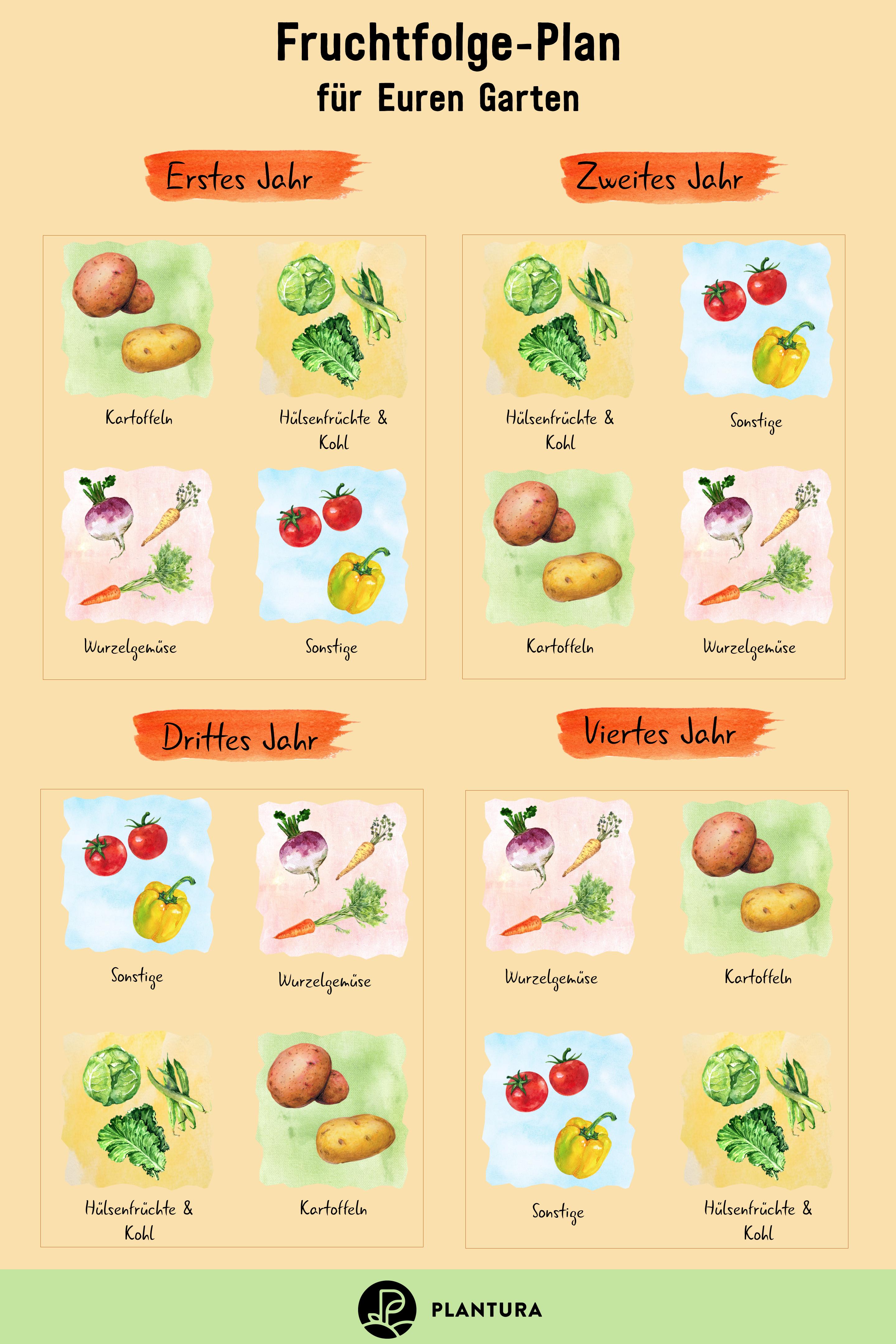 Hochbeet Bepflanzen Fruchtfolge Nutzliche Tipps Plantura In 2020 Fruchtfolge Hochbeet Bepflanzen Fruchte