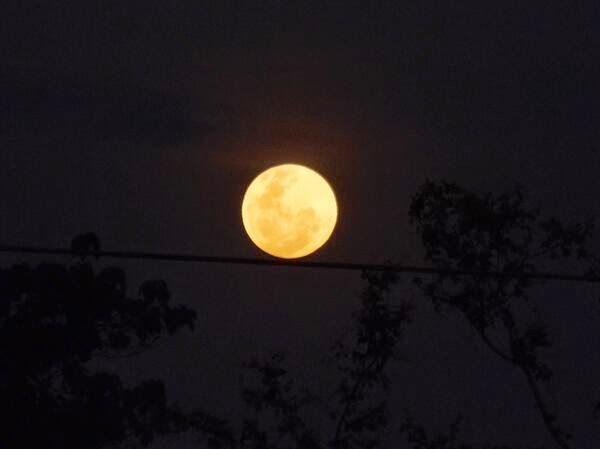 Entérate Cali: Galería fotográfica del eclipse lunar en #CaliCo